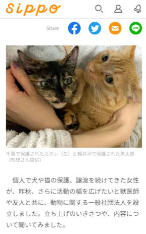 朝日新聞ペット情報サイト「sippo」にてワタデキが掲載されました。